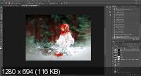 Зимний лес. Обработка в фотошоп (2017)