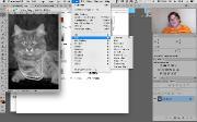 Adobe Photoshop. Базовый и Продвинутый уровень (2017) Видеокурс