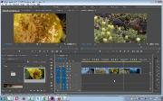 Профессиональный видеомонтаж в программе Adobe Premiere Pro CC. Часть I-II (2017/PCRec/Rus)