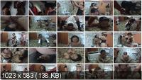 MFX Media: (Ashley, Raquel, Cristina) - SD-3229 Dangerous Women [HD 720p] - Lesbian, Vomit, Domination